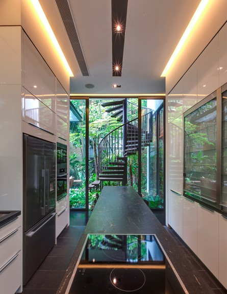 בית חלומות סינגפור, מטבח גובה (צילום: Sanjay Kewlani)