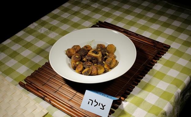 משמש ממולא בבשר טלה של צילה עופר (צילום: דניאל בר און)