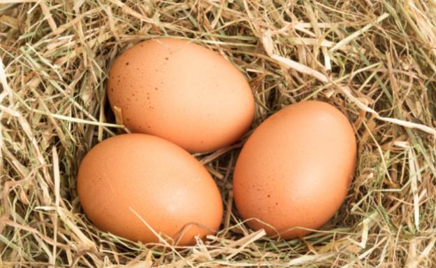 שלוש ביצים (צילום: Thinkstock)