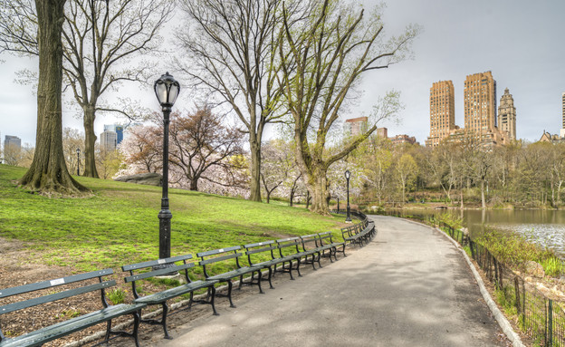 פסח בניו יורק (צילום: אימג'בנק / Thinkstock)