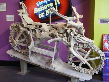 אופנוע מעצמות