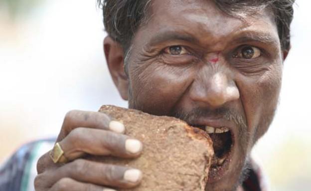 אוכל אבנים (צילום: דומיניק רודריגז)