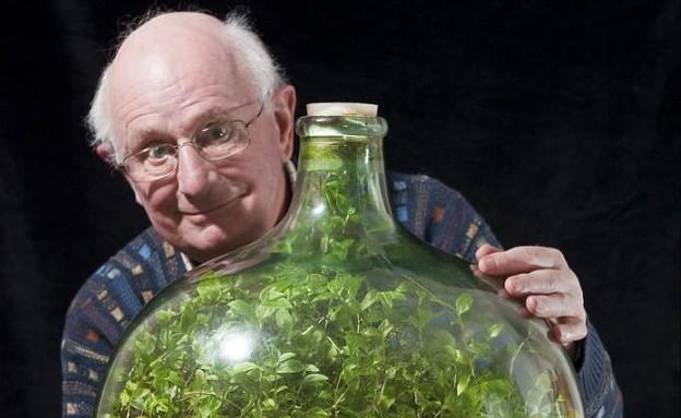 צמח של מר לטימר (צילום: dailymail.co.uk)