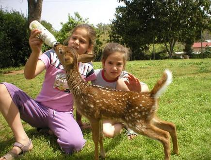 פינת הליטוף הכי טובה - לגעת בחיות, ספארי לילדים בעמק חפר