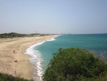 החוף הכי טוב - חוף פלמחים