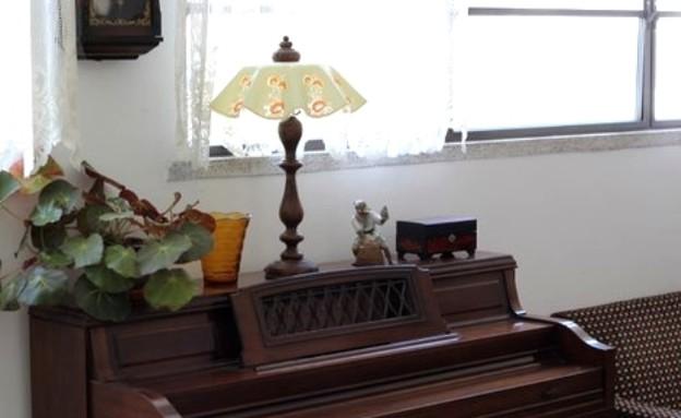 קופצות בית ביפו, סלון פסנתר עציץ (צילום: שי בן אפרים ודני אבשלום)