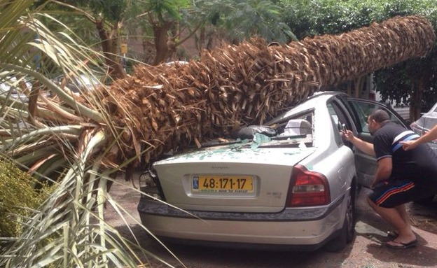 סערה באילת (צילום: חדשות 2)