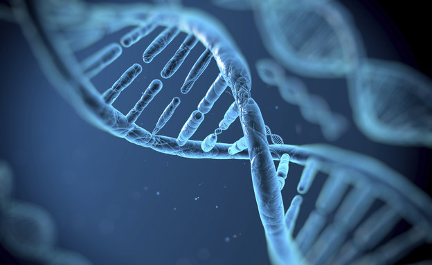 DNA (צילום: אימג'בנק / Thinkstock)