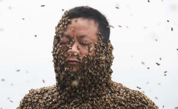 מכוסה דבורים (צילום: acidcow.com)