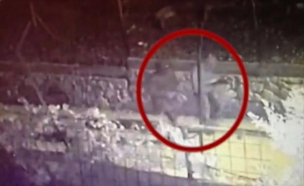 כלב נשך, בית הבעלים הותקף בירי (צילום: חדשות 2)