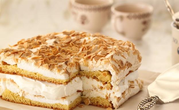 העוגה הטובה בעולם (צילום: חן שוקרון, מתוקים שלי)