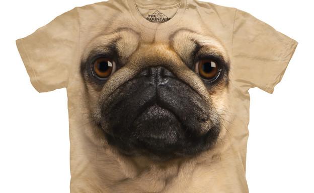 החמישייה 5.5, חולצת כלב בהיר (צילום: firebox)