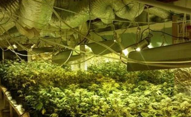 צפו במעבדת הסמים שנתפסה במרכז (צילום: חטיבת דוברות המשטרה)
