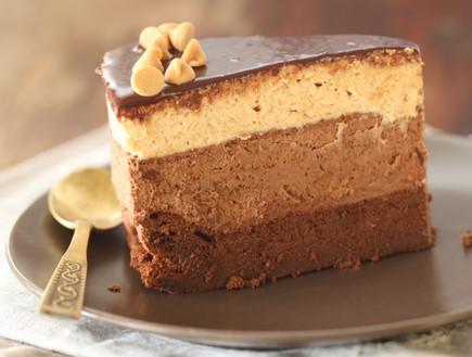 עוגת מוס שוקולד וחמאת בוטנים (צילום: חן שוקרון, אוכל טוב)