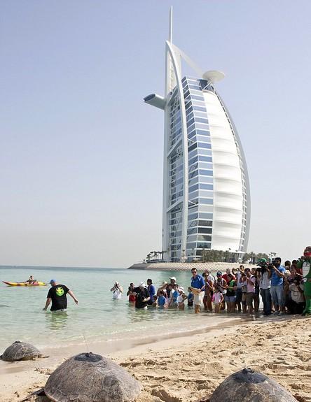 נופש יוקרתי לילדים, חוף (צילום: dailymail.co.uk)