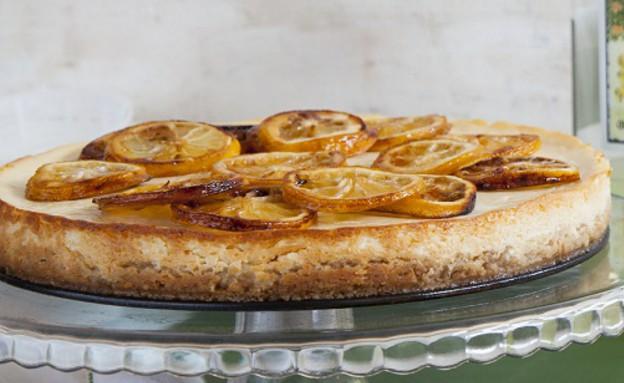 עוגת ריקוטה לימונית (צילום: באדיבות מחלבות גד)