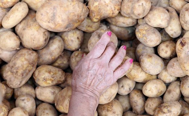 מחירי תפוחי האדמה עולים (צילום: רויטרס)