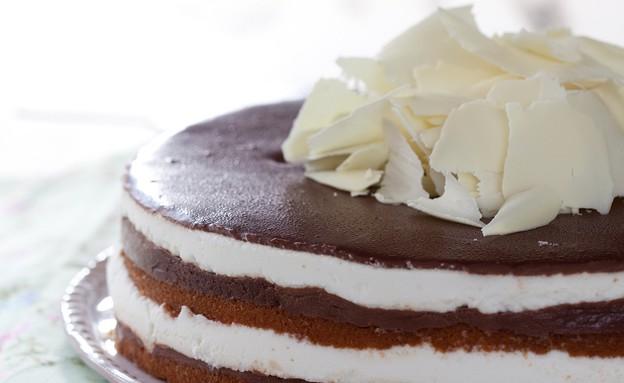 עוגת מסקרפונה ושוקולד ללא אפיה (צילום: דן לב, גד, מחלבות גד)