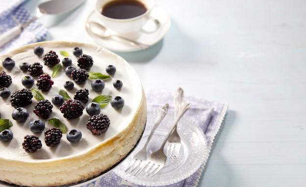 עוגת ריקוטה ויוגורט (צילום: דן לב, גד, מחלבות גד)