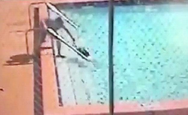 צפו בהתחשמלות בבריכה (צילום: יוטיוב)