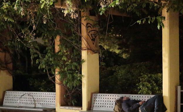 נייס גאי (צילום: עודד קרני)