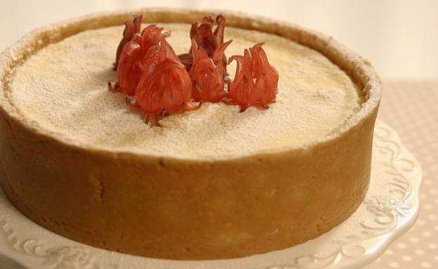 עוגת גבינה בסגנון איטלקי (תמונת AVI: mako)