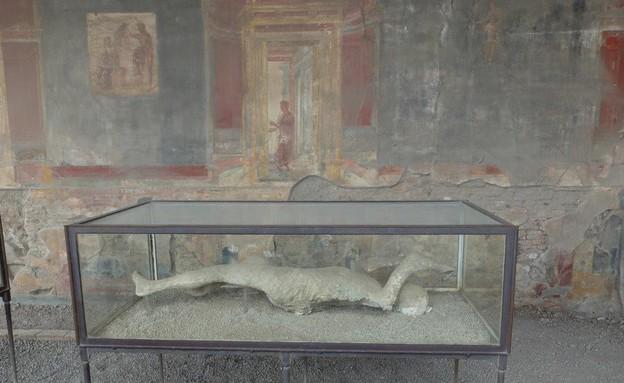 טיול באיטליה, פומפיי גופה (צילום: אייל שפירא)
