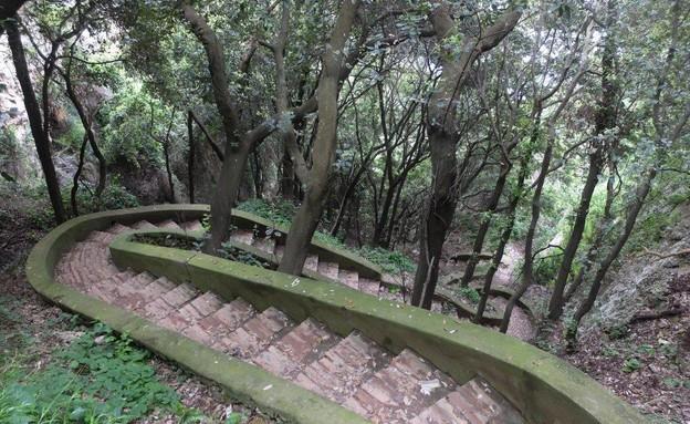 טיול באיטליה, קארפי מדרגות (צילום: אייל שפירא)