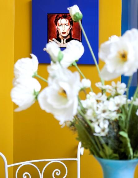 בשיפוץ גילי אונגר גובה פרחים (צילום: שירן כרמל)