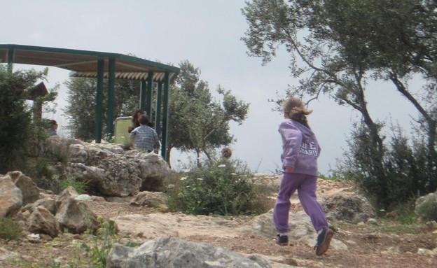 גבעת הספלולים (צילום: ענת אופיר)