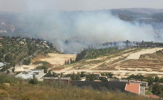 שריפה באבו גוש (צילום: חדשות 2)