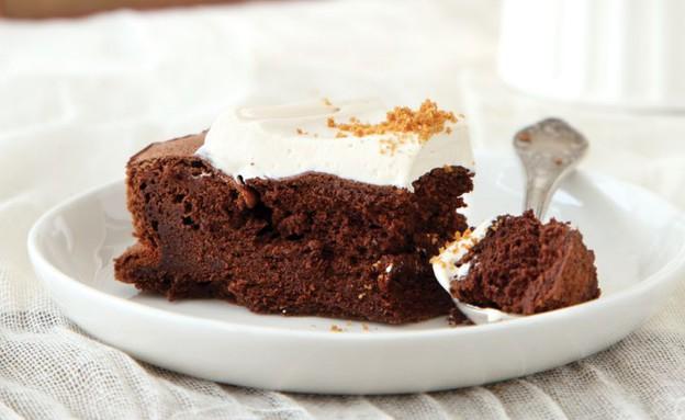 עוגת שוקולד ולוטוס (צילום: דניה ויינר, לוטוס)