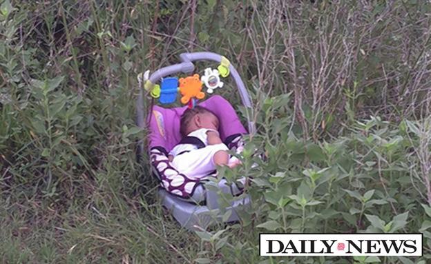 הילדה נמצאה בין השיחים (צילום: DAILY NEWS)