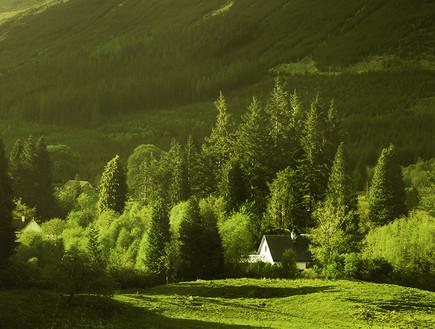 סקוטלנד, ירוק (צילום: סיון פרץ)