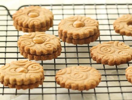 עוגיות קינמון - על רשת צינון