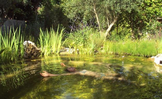 בריכות אקולוגיות, בריכה באזור השרון, מים שקטים (צילום: סמדר יחיאלי)