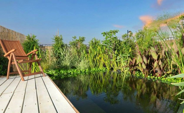 בריכות אקולוגיות, סוויטות ״חד נס 229״  (צילום: יואב ארד)
