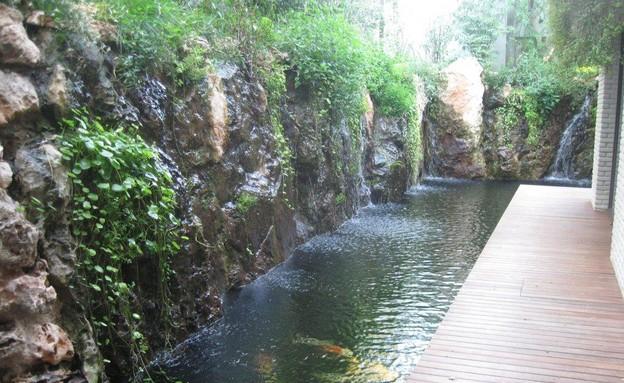 בריכות אקולוגיות, מים שקטים. אדריכלית ליאורה קרלשט (צילום: סמדר יחיאלי)