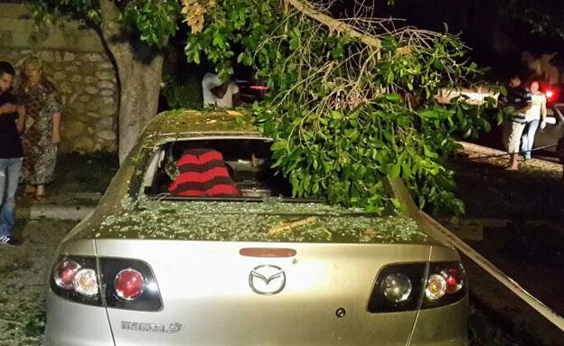 כלי רכב נפגעו בשדרות (צילום: מיכה שמילוביץ')