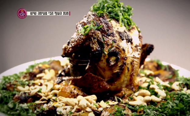עוף על צנצנת תבלינים (תמונת AVI: mako)