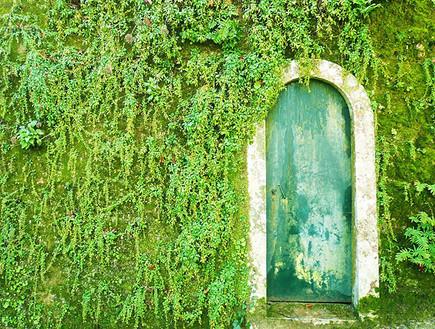 דלתות, פורטוגל, צילום Amaury Henderick