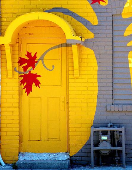 דלתות, טורונטו קנדה, צילום mandalaybus