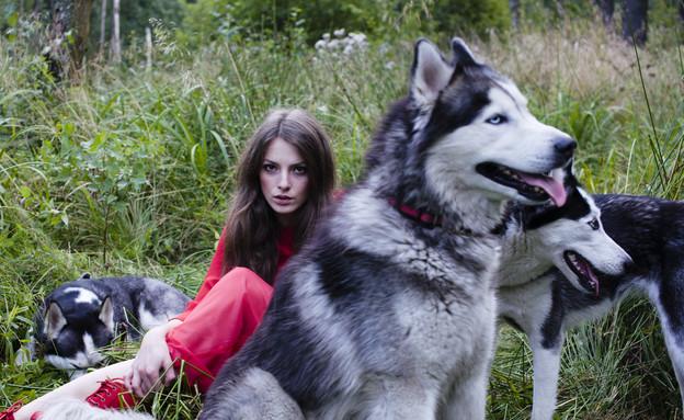 לשבת עם זאבים (צילום: Thinkstock)