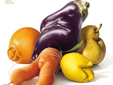 ירקות ופירות מכוערים