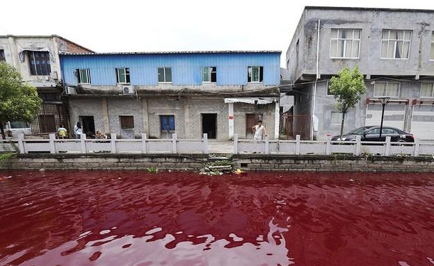 נהר דם (צילום: Central European News)