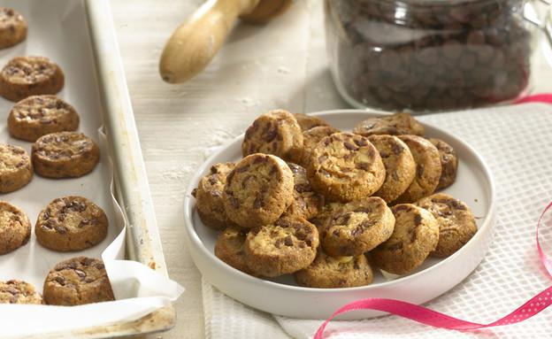 עוגיות שוקוצ'יפס של לחמי (יח``צ: ארז בן שחר)