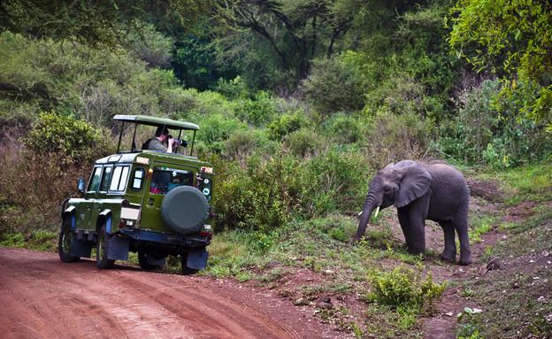 טרקים, טנזניה (צילום: אימג'בנק / Thinkstock)