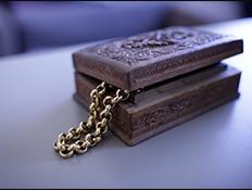 קופסת תכשיטים של מירי מסיקה (צילום: נופר יורן)