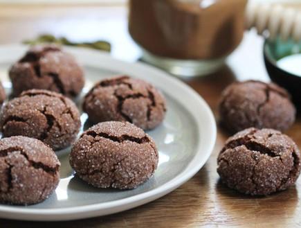 עוגיות שוקולד דבש מתובלות (צילום: עידית נרקיס כ