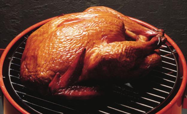 תרנגולת על הגריל (צילום: anopdesignstock, GettyImages IL)